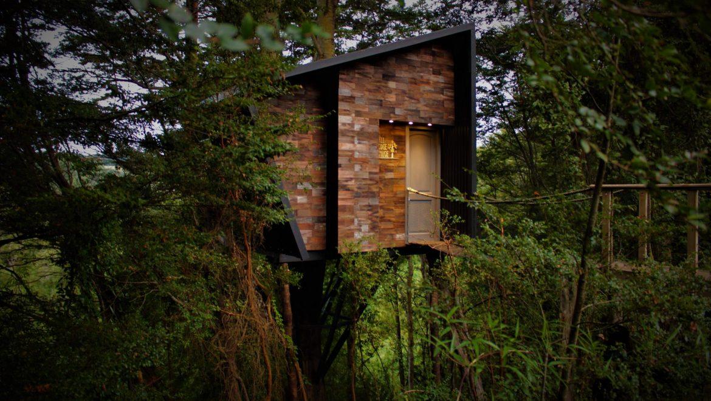Tree Lodge Chiloé