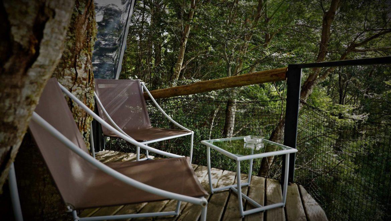Tree Lodge Chiloe, Isla Lemuy Hotel